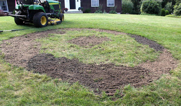 Filling Bare Spots with Soil