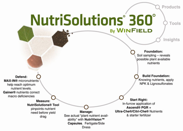 NutriSolutions Graphic