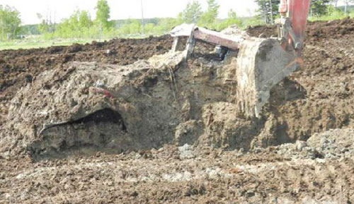 Case IH Steiger 485 Covered in Manure (RCMP Photo)